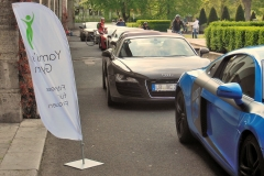 Sportwagen-Konvoi vor Yami's Gym 2015